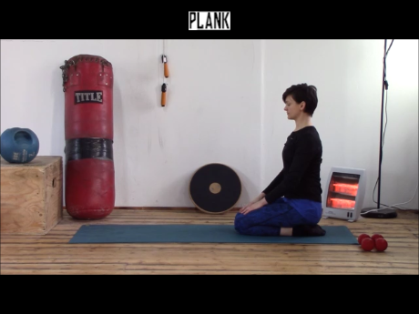 Plank.wlmp