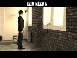 Wall Crawl 2.wlmp