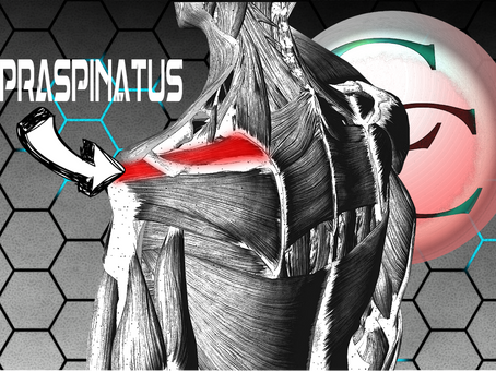 Supraspinatus tendinitis: A quick overview for the patient.