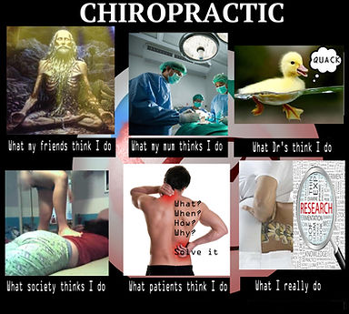chiropractic meme, what My friends think