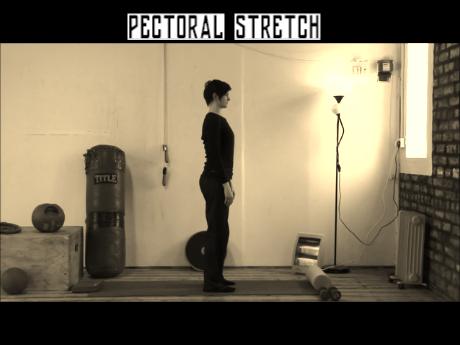 Pectoralis Stretch.wlmp