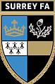 Surreyfa Logo.png