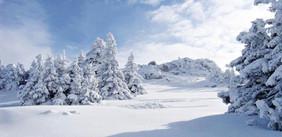 Ski-emg-winter scenery