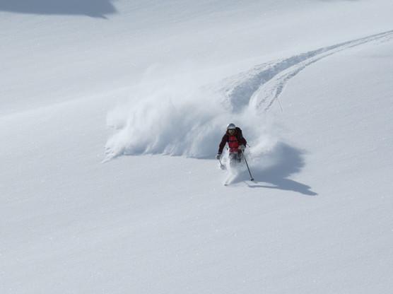 ski-emg-powder turns