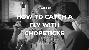 How to Catch a Fly with Chopsticks