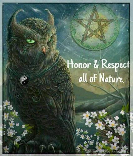 Wicca Owls 013.jpg