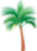 palm-tree-1297489_1280.png