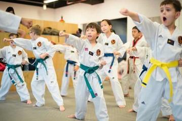 Martial Arts by TMA
