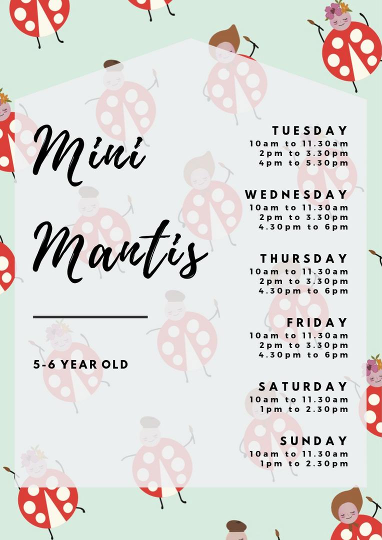 Mini Mantis Class