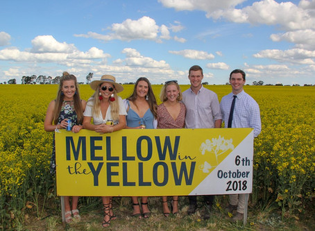 Hundreds set to Mellow in the Yellow for farmer health
