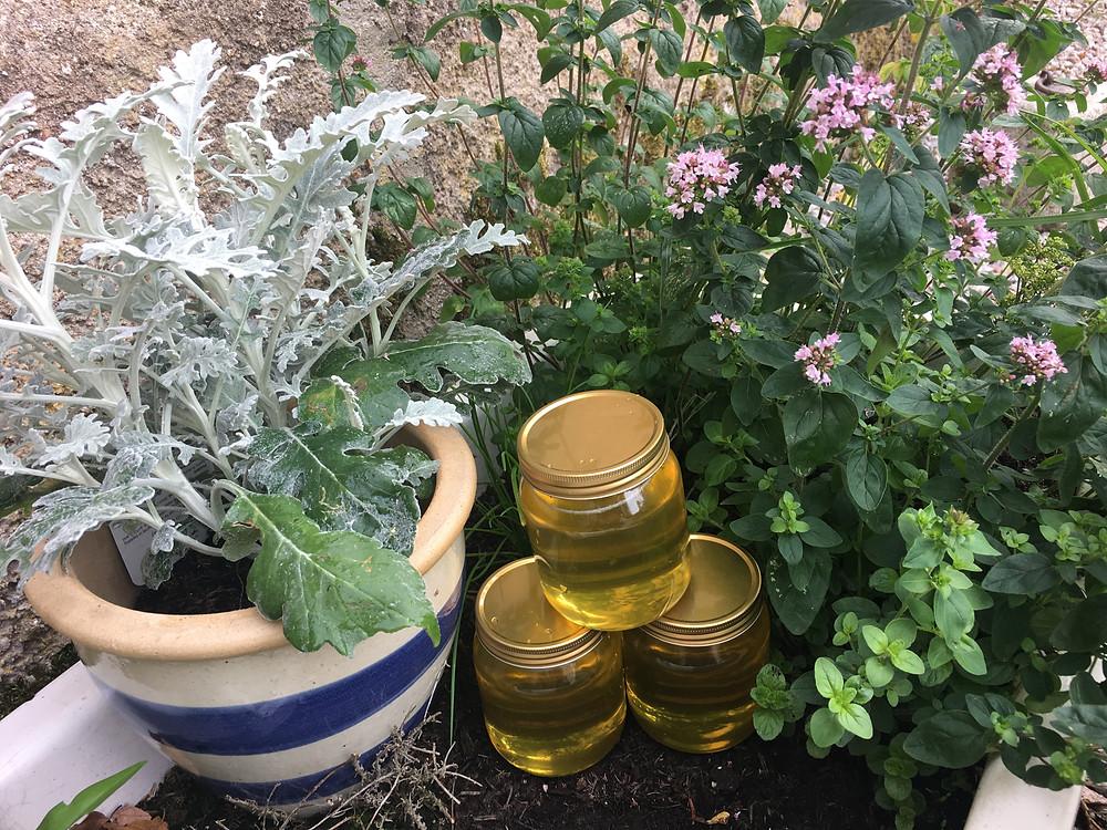 Pots of KH honey