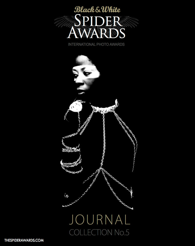 Black & White Spider Awards 2014 - Journal Collection No.5