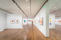 Harvard Arts Museum