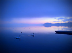 Lungo Lago1