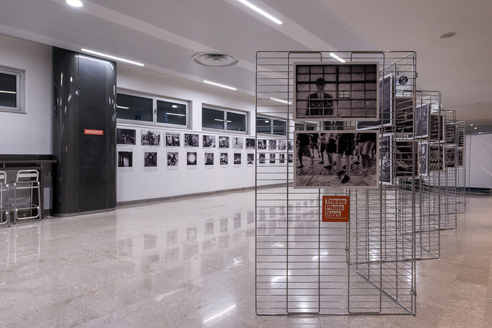 'Flowing City' exhibition in Trieste Airport
