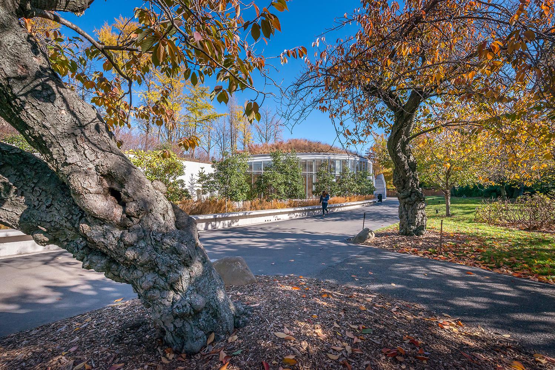 Botanic17_800_9685