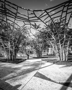 Symphony Park, South Beach Miami