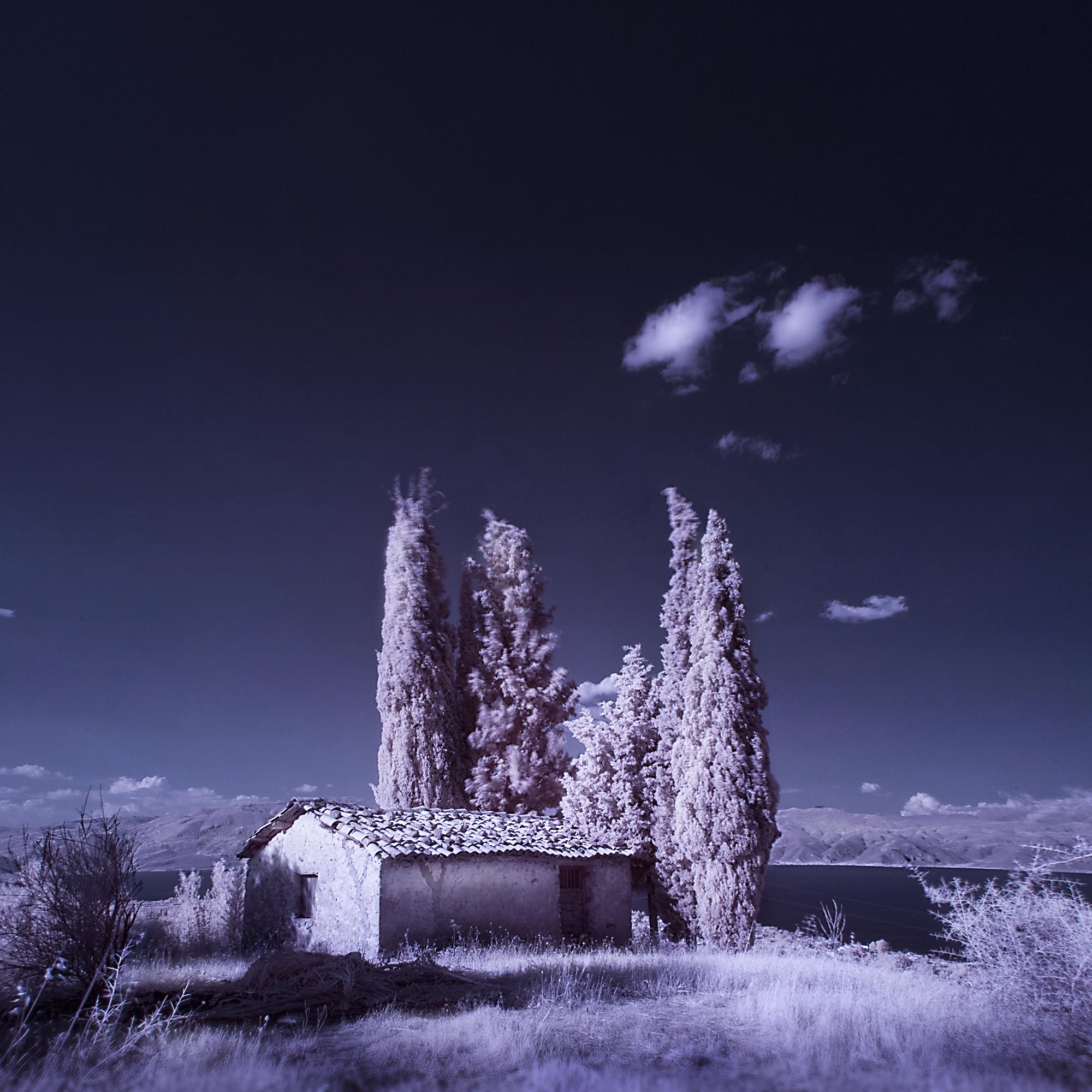 Infra4 cypress hut
