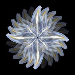 Bioemulation1 color