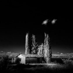 Terrain1_cottage