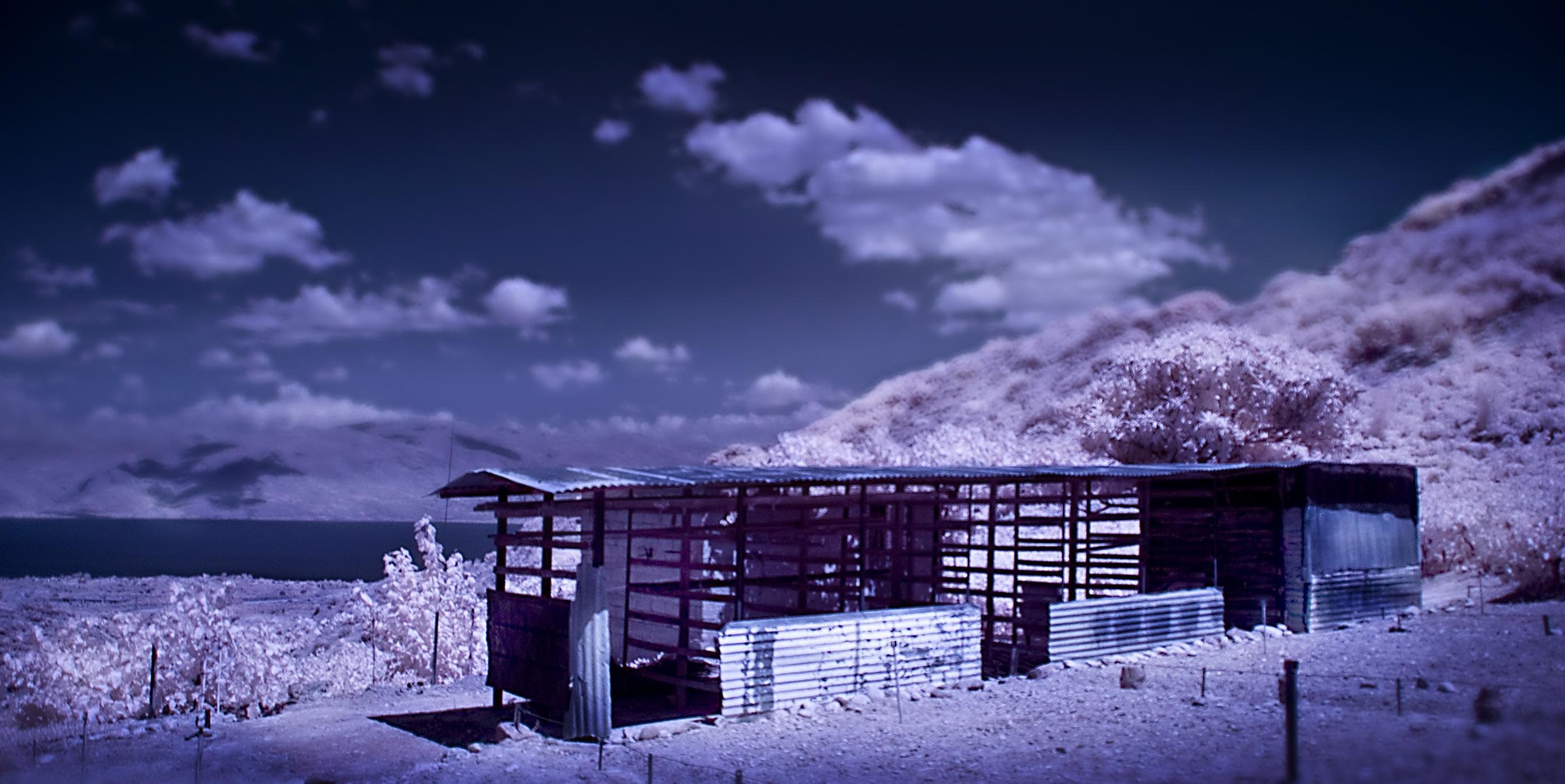Infra5 vineyard shed