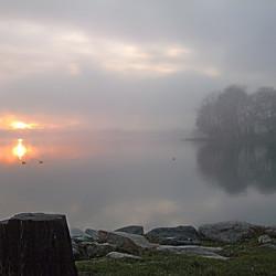 Lungo Lago6