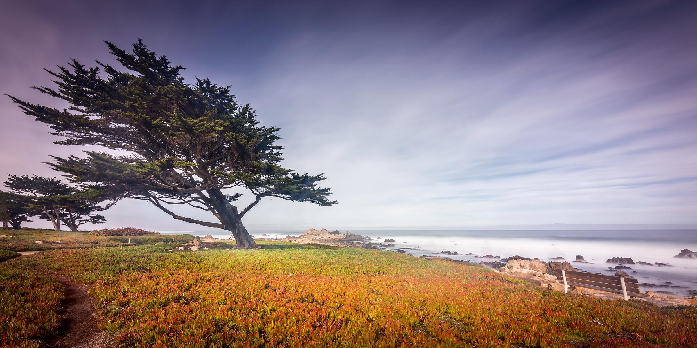 Monterey Bay Park, California