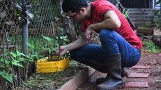 Open Siembro: Un proyecto que nació para facilitar el trabajo del cultivo con la tecnología