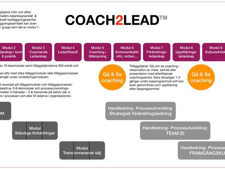 COACH2LEAD - Processen