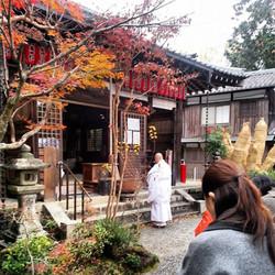Gyosho Uehara sensei, Sekizan Zennin, Kyoto