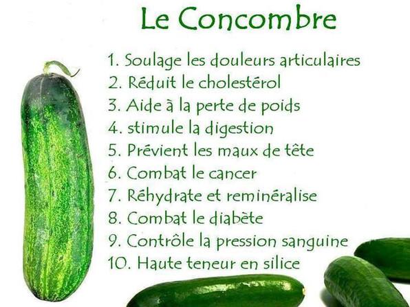 les bienfaits de la concombre