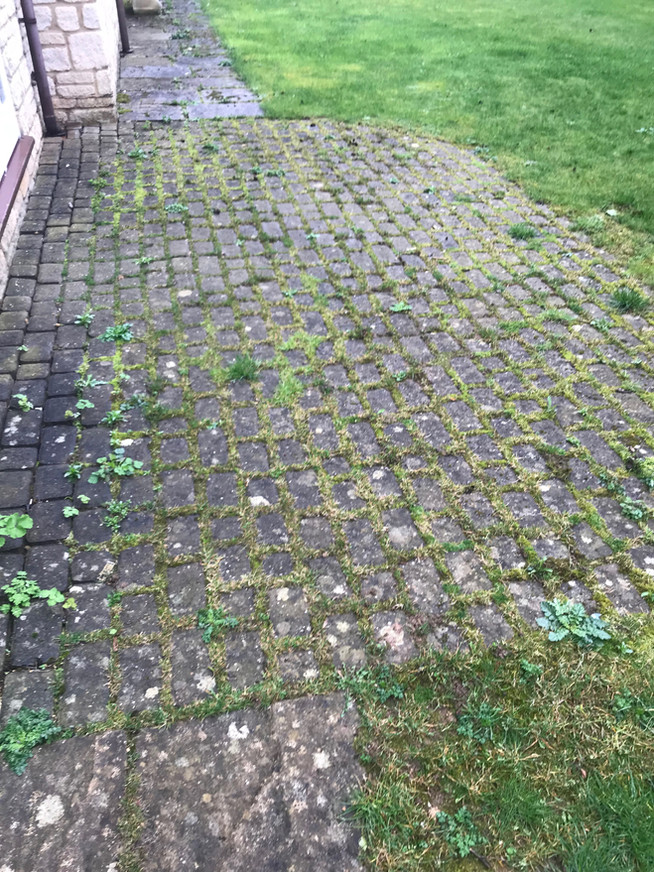 DRIVEWAY CLEANING AND TREATING EASTBOURNE HASTINGS EAST SUSSEX