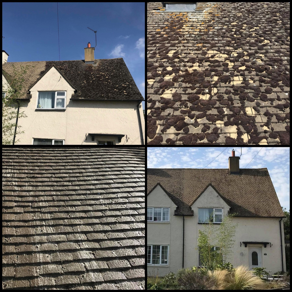 ROOF CLEANING AND SOFTWASHING IN BRIGHTON