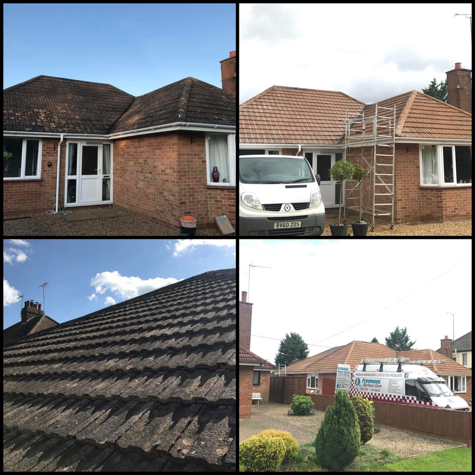ROOF CLEANING SOFTWASHING EASTBOURNE