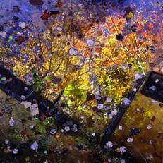 Autumn Galaxy
