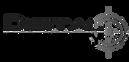 Logo_Digital_Security.png