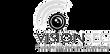 Logo Visonsec.png