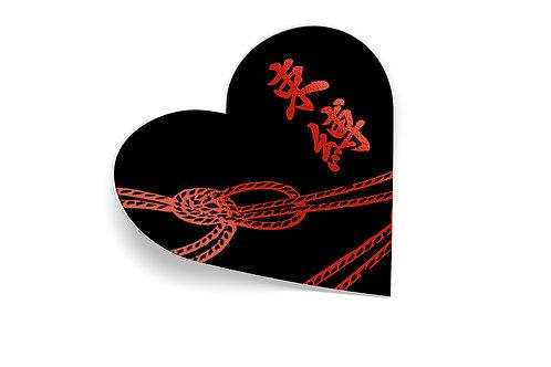 Shibari Love
