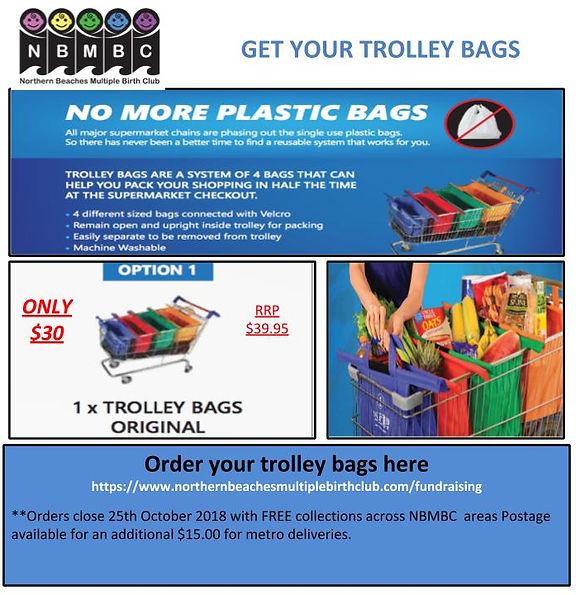 Copy of TROLLEY-BAGS-FLYER (1) (1).jpg