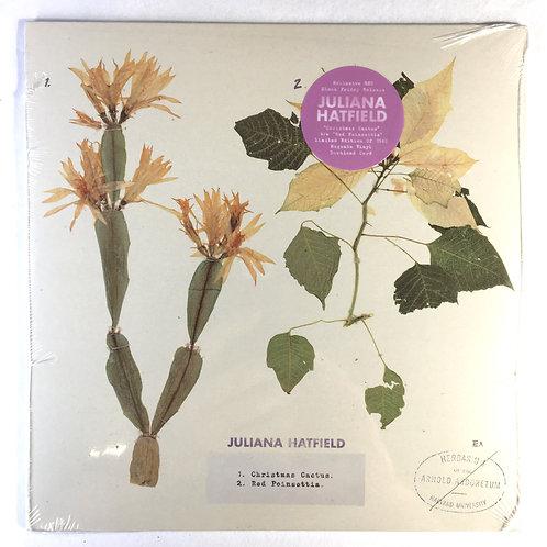 Julianna Hatfield - Christmas Cactus/Red Poinsettia