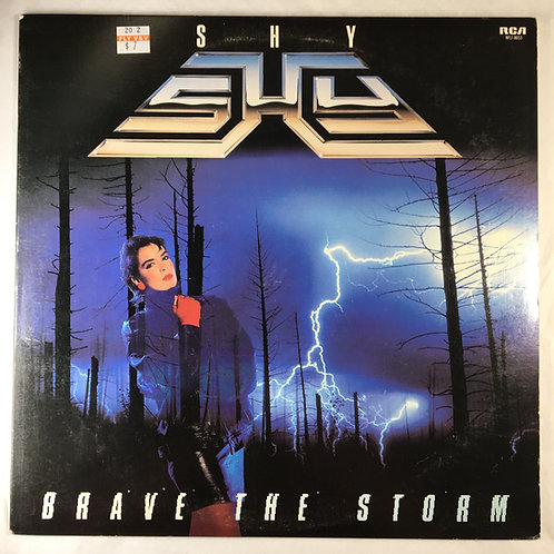 Shy - Brave the Storm