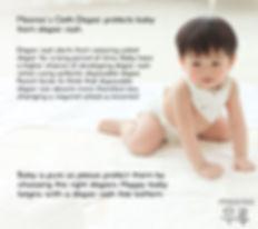 Diaper Insert Info 1.jpg