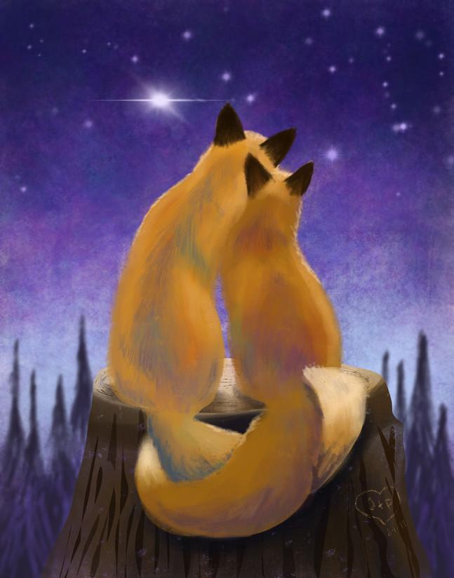 Flips_foxes.jpg