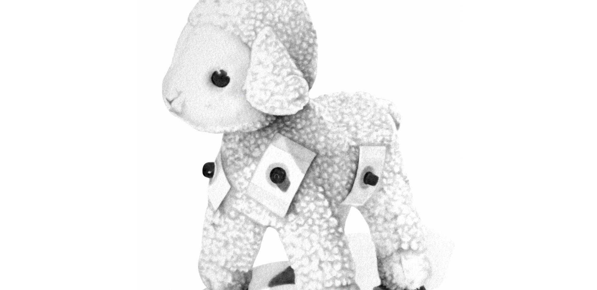 Mouton (Électrocardiogramme)