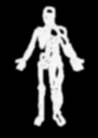 Skeleton-1.png