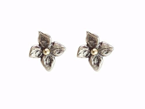 Silver FLORET stud earrings