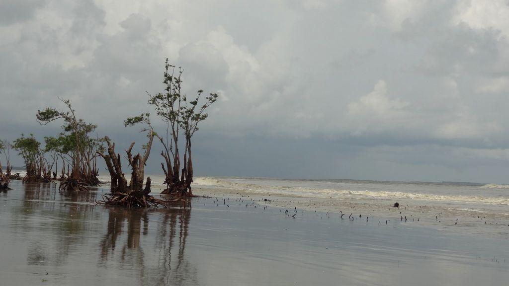 henry-island beach