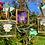 Thumbnail: Pressed Flower Frame - Small