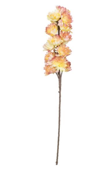 Tall Botanical Stem
