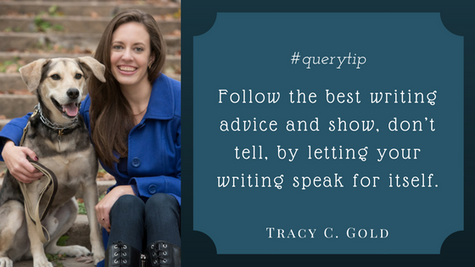 Q&A with Writer and Literary Agent Intern, Tracy C. Gold